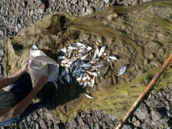 5 порушників зі збитками в 98 тис грн виявив Миколаївський рибоохоронний патруль за вихідні