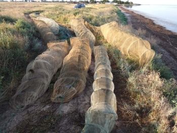 Зафіксовано порушення зі збитками на майже 65 тис. грн, - Чорноморський рибоохоронний патруль