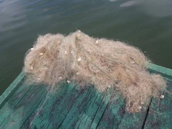 За чотири дні Вінницький рибоохоронний патруль викрив 15 порушень