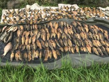 Порушники на річці Оріль незаконно виловили 30 кг риби, - рибоохоронний патруль Дніпропетровщини