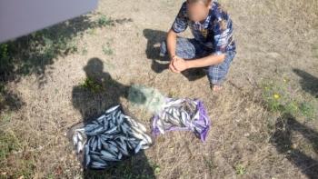 Майже 70 тис. грн збитків зафіксував рибоохоронний патруль Миколаївщини за тиждень