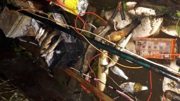 Затримано порушника з електровудкою та 23 кг риби, - Полтавський рибоохоронний патруль