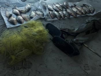Рибоохоронним патрулем Полтавщини за тиждень виявлено 115 порушень зі збитками на майже 20 тис. грн