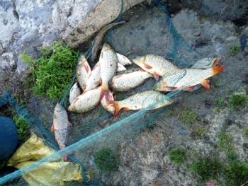 За три дні Вінницький рибоохоронний патруль зафіксував 16 порушень правил рибальства