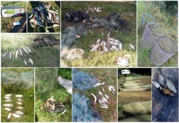 За тиждень викрито 17 порушень зі збитками на 27 тис. грн, - Чернігівський рибоохоронний патруль