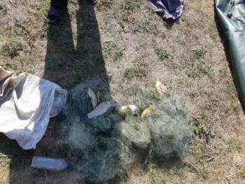 За першу половину серпня вилучено 55 кг риби та 25 знарядь лову, - Харківський рибоохоронний патруль