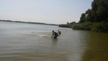 Іхтіологи Запорізького рибоохоронного патруля та науковці Інституту рибного господарства розпочали малькову зйомку