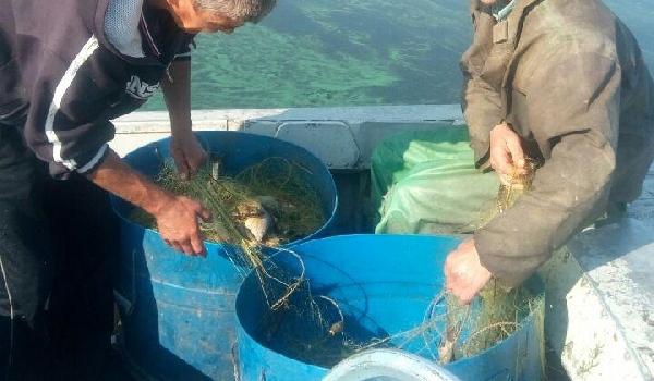 На Канівському водосховищі затримано промисловика, який завдав 44 тис. грн збитків, - Київський рибоохоронний патруль