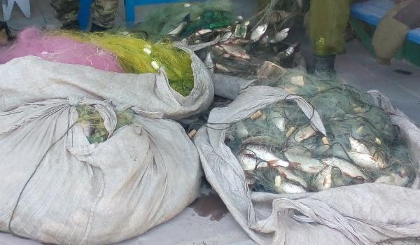 Протягом доби у браконьєрів вилучено понад 100 кг риби, - рибоохоронний патруль Полтавщини