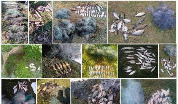 Викрито 54 порушення зі збитками на понад 21 тис. грн, - рибоохоронний патруль Чернігівщини