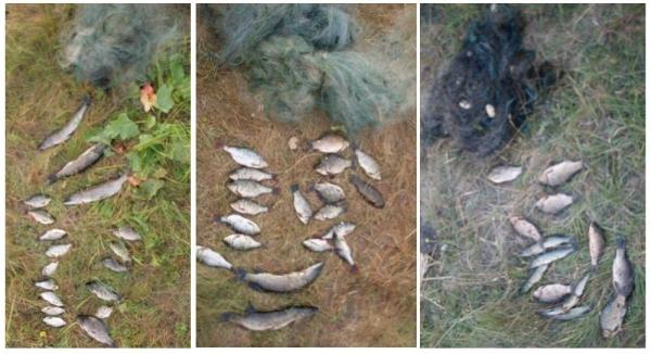 Зафіксовано п'ять порушень зі збитками на понад 30 тис. грн, - рибоохоронний патруль Чернігівщини