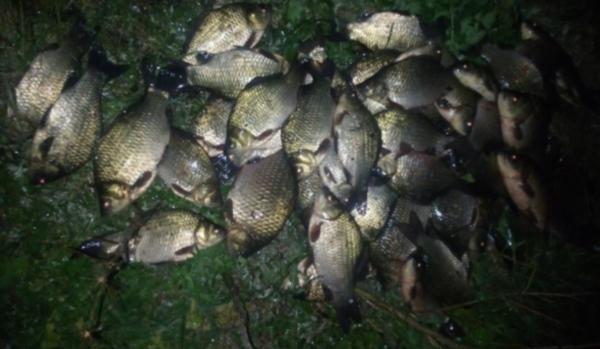 За місяць виявлено 80 порушень та вилучено 277 кг біоресурсів, - рибоохоронний патруль Сумщини