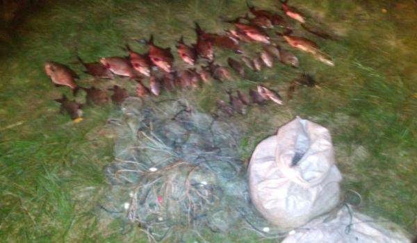 Рибоохоронний патруль Житомирщини виявив 115 порушень за серпень