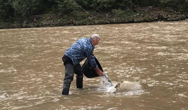 До водойм Буковини вселено 173 тис. екз. риби, – Чернівецький рибоохоронний патруль