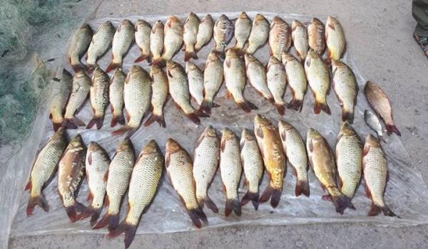 Рибоохоронцями Тернопільщини протягом серпня зафіксовано 20 порушень