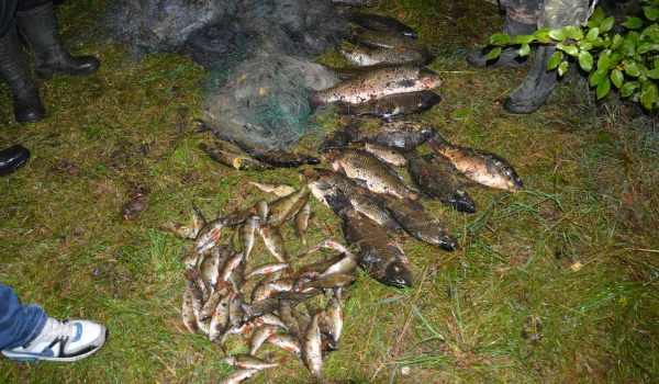Волинський рибоохоронний патруль зафіксував порушення зі збитками на майже 20 тис. грн