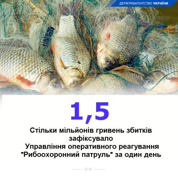 Управління оперативного реагування виявило порушення зі збитками в 1,5 млн грн