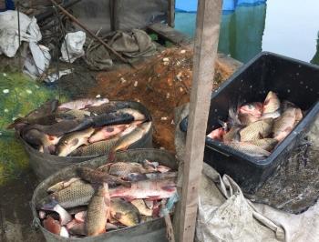 На Одещині браконьєр виловив 297 кг риби зі збитками на 74 тис. грн, - Управління оперативного реагування