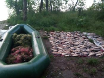 На Дніпровському водосховищі затримано порушника з 60 кг риби, - Запорізький рибоохоронний патруль