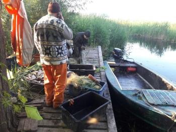 На Київському водосховищі порушники незаконно виловили 247 кг риби