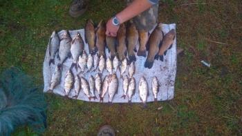 Волинський рибоохоронний патруль вилучив 58 кг риби та 44 сітки за червень