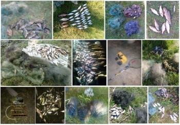 113 порушень на 92 тис. грн збитків, - результат роботи Чернігівського рибоохоронного патруля за червень