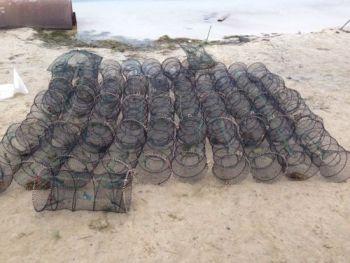 З початку роботи Донецький рибоохоронний патруль вилучив 3,6 тонн риби у порушників