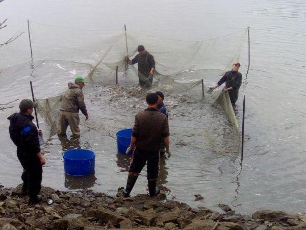 На Черкащині зафіксовано порушення зі збитками у розмірі 128 тис. грн