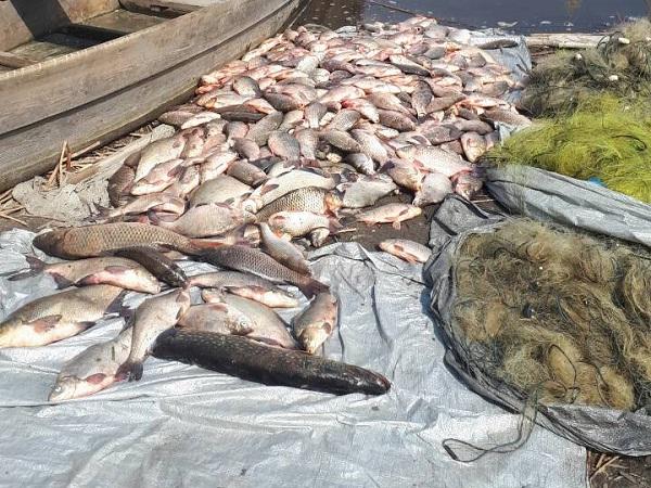 Полтавський рибоохоронний патруль протягом трьох днів викрив порушень на понад 70 тис. грн