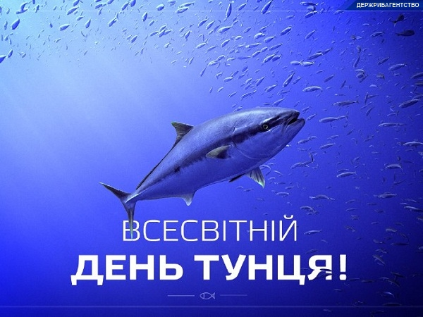А що ви знаєте про тунця?
