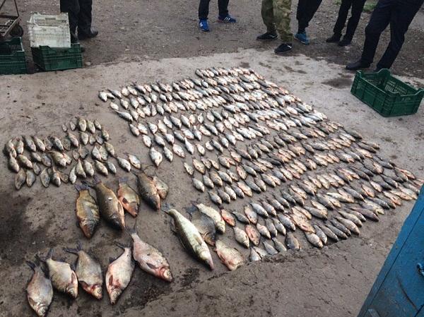 На Запорізькому водосховищі зафіксовано порушення зі збитками у розмірі 22 тис. грн