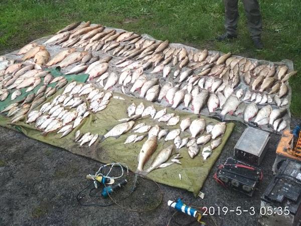 За допомогою електроструму порушники добули 88 кг риби, - рибоохоронний патруль Донеччини
