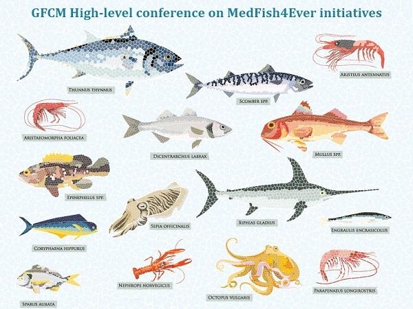 Голова Держрибагентства Ярослав Бєлов візьме участь у Конференції високого рівня щодо ініціатив ''MedFish4Ever: досягнення та оновлені зобов'язання''