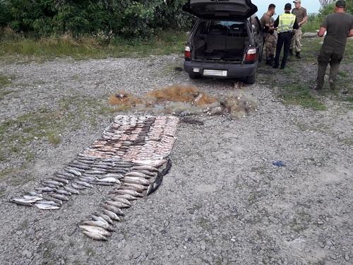 Поблизу Канівської ГЕС викрито порушників, які завдали понад 26 тис. грн збитків, - рибоохоронний патруль Черкащини