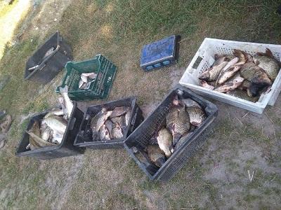 На річці Здвиж зафіксовано порушення зі збитками у розмірі 42 тис. грн, - рибоохоронний патруль Житомирщини