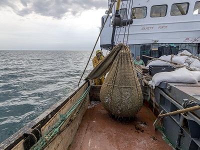 ІРЕМ провів науково-дослідні роботи у Чорному морі