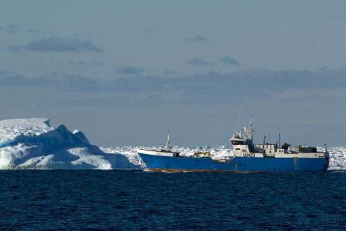 Представники ІРЕМ прозвітували про наукові дослідження в Антарктиці
