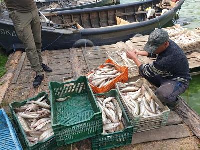 Рибоохоронний патруль Черкащини викрив промисловиків, які завдали майже 1,5 млн грн збитків