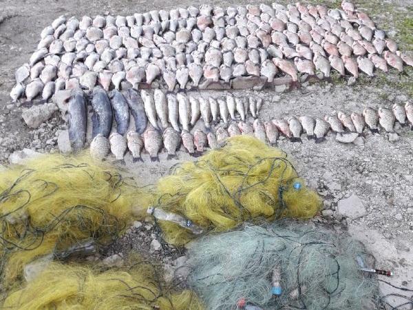 На річці Мукша порушник завдав збитків у розмірі 37 тис. грн, - Чернівецький рибоохоронний патруль