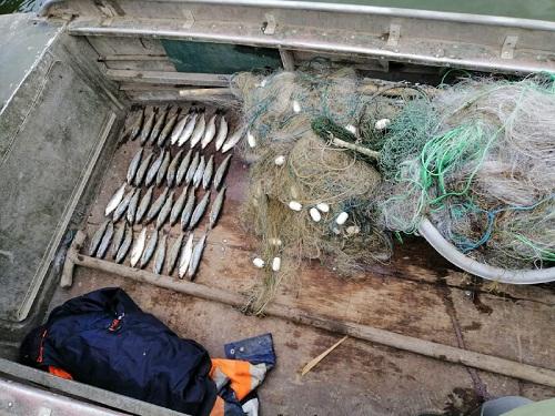 На Шаболатському лимані викрито порушника, який завдав майже 24 тис. грн збитків, - рибоохоронний патруль Одещини