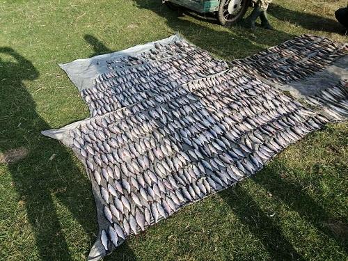 На річці Південний Буг викрито порушника, який завдав понад 80 тис. грн збитків, - рибоохоронний патруль Хмельниччини