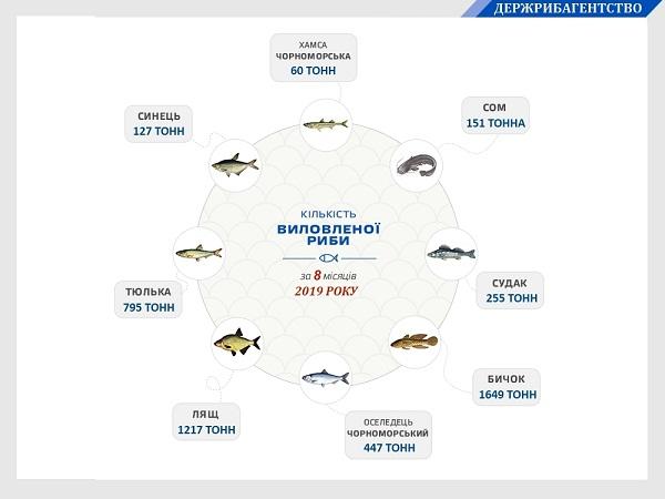 Вилов водних біоресурсів у Чорному морі збільшився на 79%