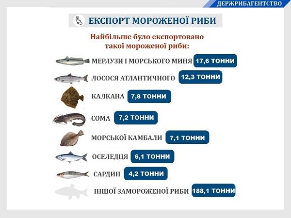 За сім місяців 2019 року Україною експортовано 254 тонни мороженої риби на майже $678 тис.