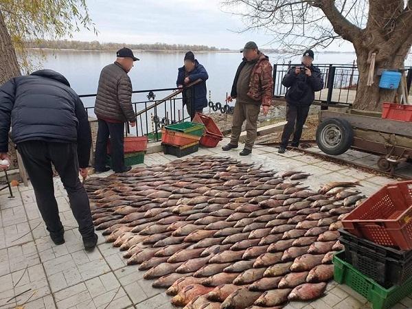 Викрито промислового рибалку з 260 кг риби на 368 тис. грн збитків, - рибоохоронний патруль Черкащини