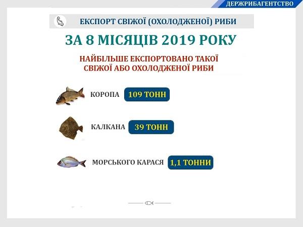 Експорт української свіжої (охолодженої) риби збільшився на 40%