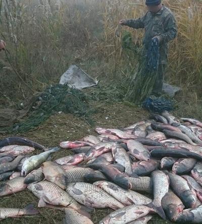 Рибоохоронний патруль Одещини викрив порушників з 284 кг риби на 30 тис. грн збитків