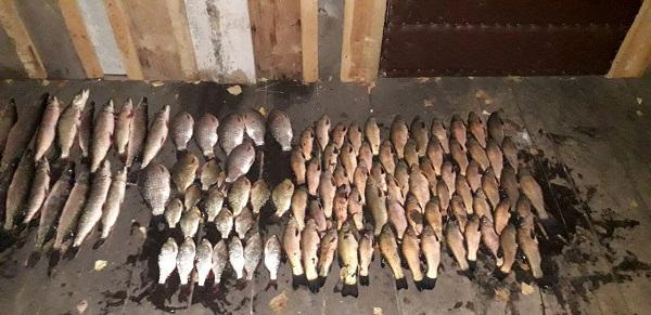 На річці Ірдинка порушник завдав понад 15 тис. грн збитків, - Черкаський рибоохоронний патруль