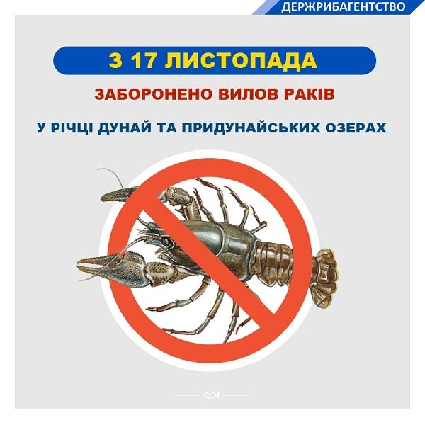 На річці Дунай та придунайських озерах встановлена заборона вилову раків, - Одеський рибоохоронний патруль