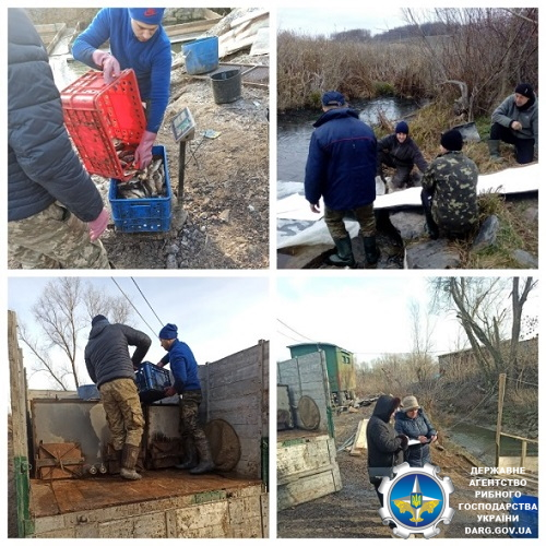 Водойми Львівщини, Вінниччини та Житомирщини поповнились 10 тоннами риби