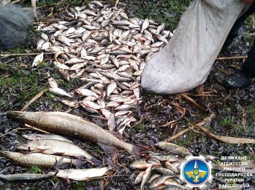 На Червонооскільському водосховищі порушник завдав понад 46 тис. грн збитків, - рибоохоронний патруль Харківщини